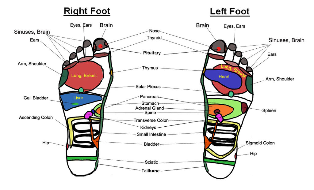 1024px-Foot-massage-chart